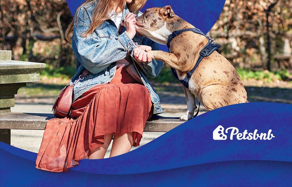 Få passet eller luftet dit kæledyr af lokale passere.